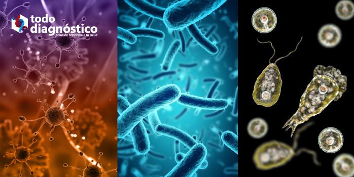Diagnóstico sindrómico: identificación de patógenos (virus, bacterias, parásitos)