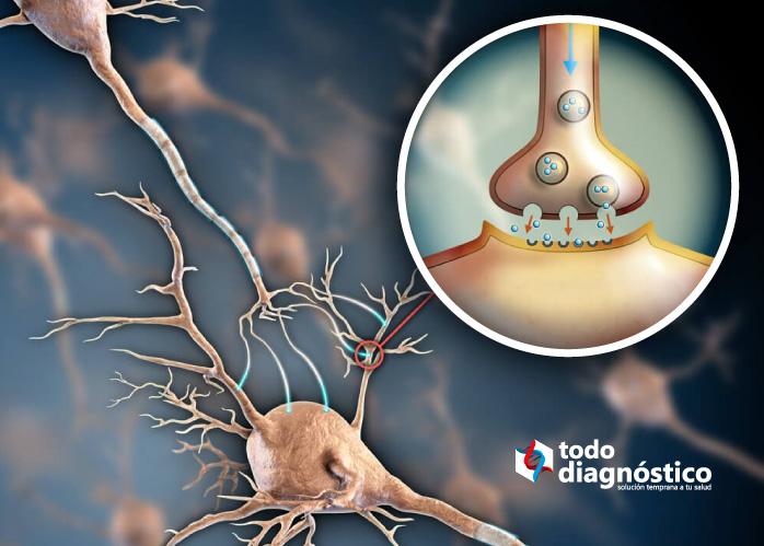 Medicamentos de alto riesgo: agentes bloqueadores neuromusculares
