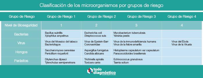 Seguridad biológica en el laboratorio: clasificación de los microorganismos por grupos de riesgo