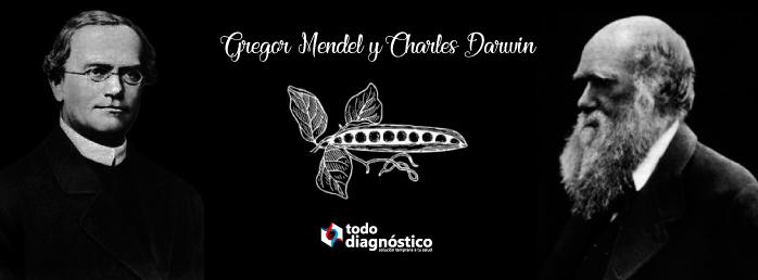 Gregor Mendel y Charles Darwin: antecedentes de la biología molecular