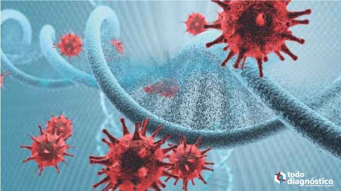 Virus y su cadena de ADN