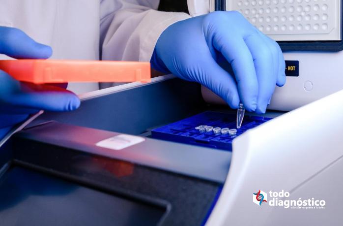 Tubo de ADN en una máquina termocicladora PCR para diagnóstico rápido de parásitos